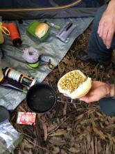 Café da manhã: pão com lentilhas germinadas (huuuum!)